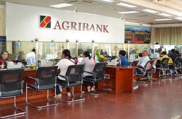 Thủ tục vay vốn ngân hàng agribank không thế chấp tài sản